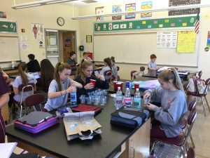 IMG 0068 300x225 - From the Desk Of...Mrs. Sandy Dilks: Hands on Learning at St. Norbert's Science Fair